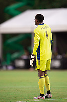 LAKE BUENA VISTA, FL - JULY 14: Sean Johnson #1 of NYCFC looking on during a game between Orlando City SC and New York City FC at Wide World of Sports on July 14, 2020 in Lake Buena Vista, Florida.