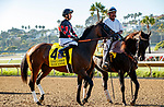 DEL MAR, CA  AUGUST 1: #4 Paige Anne, ridden by Flavien Prat, in the post parade before the Clement L. Hirsch Stakes (Grade 1) Breeders Cup Win and You're In Distaff Division on August 1, 2021 at Del Mar Thoroughbred Club in Del Mar, CA.