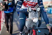 Mads Pedersen (DEN/Trek - Segafredo) wins the 73rd Kuurne - Brussels - Kuurne 2021 and takes the unique donkey-trophy home<br /> <br /> ME (1.Pro)<br /> 1 day race from Kuurne to Kuurne (BEL/197km)<br /> <br /> ©kramon