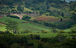 MUS, Mauritius, Black River, Cachette: Landschaft in den Bergen von Rivière Noire | MUS, Mauritius, Black River, Cachette: landscape in the mountains of Rivière Noire