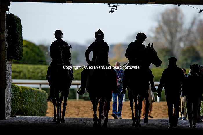 November 5, 2020: Devilwala and New Mandate at Keeneland Racetrack in Lexington, Kentucky on November 5, 2020. Alex Evers/Eclipse Sportswire/Breeders Cup