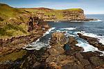 Image Ref: CA987<br /> Location: Bushrangers Bay Track<br /> Date of Shot: 28.09.19