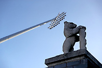 General view of the Warwickshire bear and floodlight during Warwickshire CCC vs Essex CCC, LV Insurance County Championship Group 1 Cricket at Edgbaston Stadium on 22nd April 2021