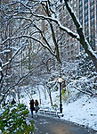 Walking through a snowy central park
