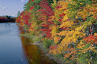 Red and sugar maples line the Ossipee River<br /> Stacey Mountain in the distance<br /> New England<br /> Carroll County,  New Hampshire