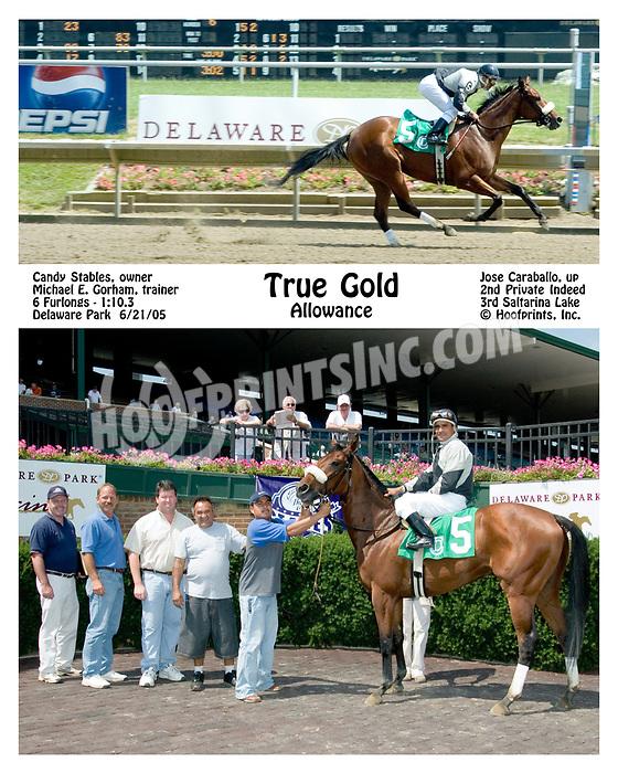 True Gold winning at Delaware Park on 6/21/05