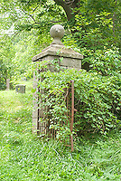 Cemetery gate covered in vines<br />