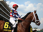 May 26, 2014: Anahuac wears the red, white, and blue colors of her owners Kazmi Cheema and Chowhan Racing LLC in the post parade of the Winning Colors at Churchill Downs on Memorial Day. She is trained by Bernard S. Flint and ridden by James Graham.  Mary M. Meek/ESW/CSM
