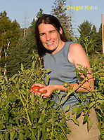 HS18-551z Adult gathering tomatoes