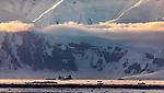 Antarctica, landscape of western Antarctic Peninsula