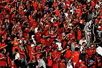 BOGOTÁ - COLOMBIA, 12-01-2019: Hinchas de América de Cali, animan a su equipo, durante partido entre Independiente Santa Fe y América de Cali, por el Torneo Fox Sports 2019, jugado en el estadio Nemesio Camacho El Campin de la ciudad de Bogotá. / Fans of America de Cali, cheer for their team during a match between Independiente Santa Fe and America de Cali, for the Fox Sports Tournament 2019, played at the Nemesio Camacho El Campin stadium in the city of Bogota. Photo: VizzorImage / Luis Ramírez / Staff.