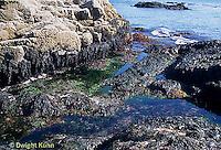 ON06-030z  Ocean - tidepool - Acadia National Park, Maine