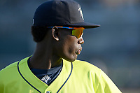 Shortstop Ronny Mauricio (2) of the Columbia Fireflies before a game against the Augusta GreenJackets on Friday, May 31, 2019, at Segra Park in Columbia, South Carolina. Augusta won, 8-6. (Tom Priddy/Four Seam Images)