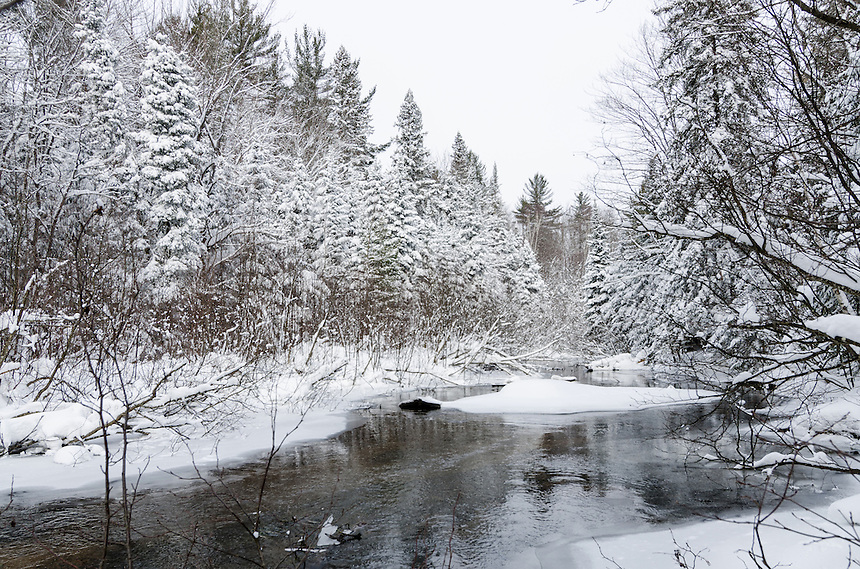 A small flowing stream passes through the U.P. forest on a winter day. Marquette County