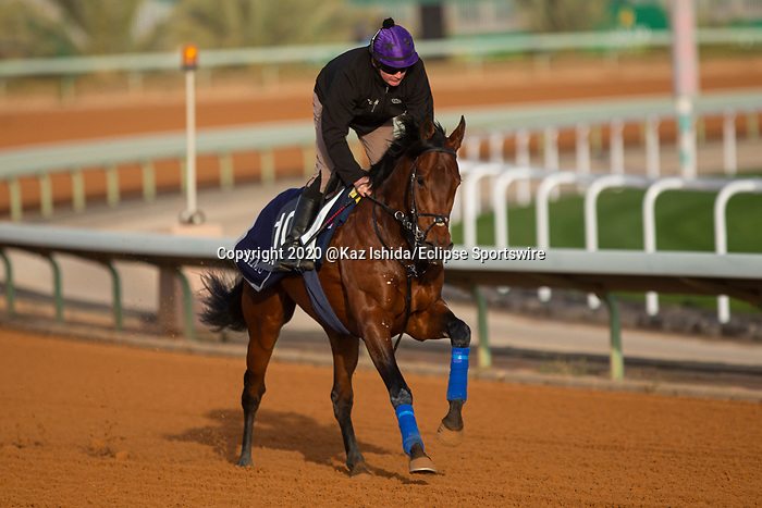 RIYADH,SAUDI ARABIA-FEB 27: Mishrif excercises for Saudi Derby at King Abdulaziz Racetrack on February 28,2020 in Riyadh,Saudi Arabia. Kaz Ishida/Eclipse Sportswire/CSM