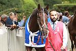 Go Unbridled, ridden by Joel Rasario, in the Beldame Invitational Stakes (GI) at Belmont Park, in Elmont, New York on September 29, 2012.