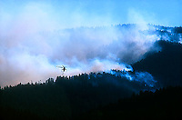 Helecopter fighting wildfire in mountains<br />