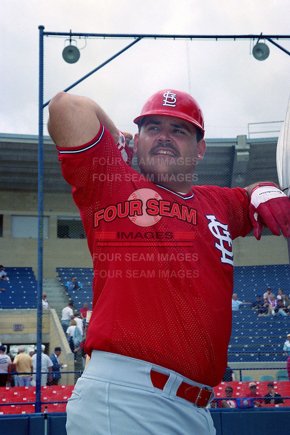 St. Louis Cardinals Hector Villanueva (29) during Spring Training 1993 at Joker Marchant Stadium in Lakeland, Florida.  (MJA/Four Seam Images)