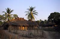 Afrique/Afrique de l'Ouest/Sénégal/Parc National de Basse-Casamance/Kabrousse : Cases