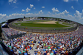 Stefan Wilson, Andretti Autosport Honda, Zach Veach, Andretti Autosport Honda
