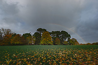 2020 10 26 Rainbow in Swansea, Wales, UK