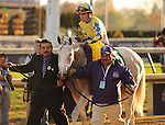 Hansen, ridden by jockey Ramon Dominquez and trained by Michael Maker win the Breeders' Cup Juvenile at Churchill Downs on  November 4, 2011..