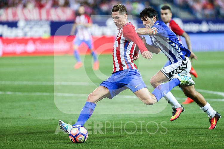 Atletico de Madrid's Fernando Torres and Manu during the match of La Liga Santander between Atletico de Madrid and Deportivo Alaves at Vicente Calderon Stadium. August 21, 2016. (ALTERPHOTOS/Rodrigo Jimenez)