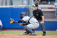 Princeton Rays catcher Ronaldo Hernandez (24) sets a target as home plate umpire Brandon Blome looks on during the game against the Danville Braves at American Legion Post 325 Field on June 25, 2017 in Danville, Virginia.  The Braves walked-off the Rays 7-6 in 11 innings.  (Brian Westerholt/Four Seam Images)