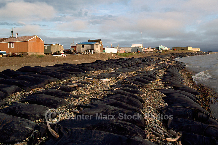 Tuktoyaktuk, NWT, Northwest Territories, Arctic Canada - Sandbags along Shore to prevent Erosion of Coast from Beaufort Sea