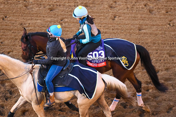 November 5, 2020: Diamond Oops, trained by trainer Patrick L. Biancone, exercises in preparation for the Breeders' Cup Sprint at Keeneland Racetrack in Lexington, Kentucky on November 5, 2020. John Voorhees/Eclipse Sportswire/Breeders Cup/CSM