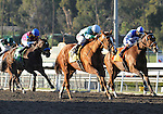 February 14, 2010.Striking Dancer riden by Alex Solis wins The La Canada Stakes at Santa Anita Park, Arcadia, CA
