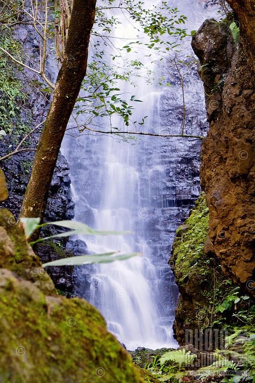 Hidden waterfall along the Wailua River in Lihue, Kaua'i.