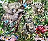 Lori, REALISTIC ANIMALS, REALISTISCHE TIERE, ANIMALES REALISTICOS, zeich, paintings+++++Koalas_3_18.50X16_2014_72,USLS226,#a#, EVERYDAY ,puzzle,puzzles