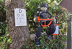 SCARECROW VILLAGE FESTIVAL IN HORDLE, HAMPSHIRE.<br /> <br /> Pictured: Goings & Cummings - Entry No.6 for the Hordle Scarecrow compeition.<br /> <br /> Entries this year to a village scarecrow competition seem to have taken a Covid-19 theme, with entries showing Dominic Cummings holding a steering wheel next to an eye chart, key workers stood 2 metres apart and politicians stood at lecterns.<br /> <br /> The pandemic appears to have also played a part in the number of entries this year which is down from twenty last year to eight, but families and businesses have still produced a range of scarecrows for the competition.<br /> <br /> The competition this year is raising money for PATCH - Parents and Teachers in the Community of Hordle, and is organised by the Hordle and District Twinning Association.<br /> <br /> © Ewan Galvin/Solent News & Photo Agency<br /> UK +44 (0) 2380 458800