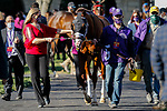November 7, 2020 : Whitmore, ridden by Irad Ortiz, Jr., wins the Sprint on Breeders' Cup Championship Saturday at Keeneland Race Course in Lexington, Kentucky on November 7, 2020. Carolyn Simancik/Breeders' Cup/Eclipse Sportswire/CSM