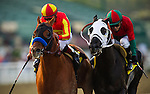 Coil with jockey MARTIN GARCIA up (left) defeats Ultimate Eagle and MARTIN PEDROZA to win the 2013 running of the San Pasqual Stakes at Santa Anita Park in Arcadia, California on January 5, 2013.
