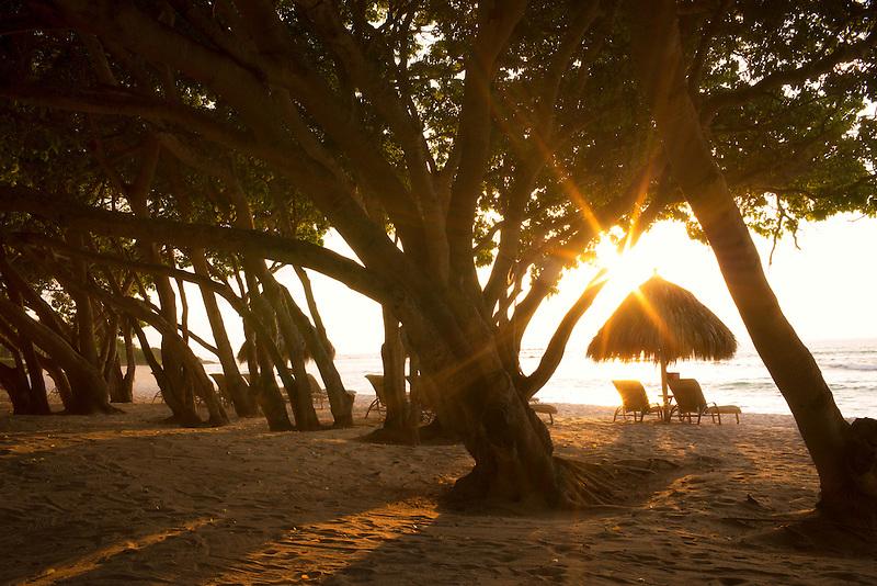 Sunburst through trees with beach chairs and umbrellas on beach. Punta Mita, Mexico