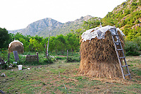 A hay stack haystack with drying hay in the garden, with an old wooden ladder, mountains in the background. Durovic Jovo Winery, Dupilo village, wine region south of Podgorica. Vukovici Durovic Jovo Winery near Dupilo. Montenegro, Balkan, Europe.