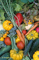 HS52-015a  Variety of harvested vegetables - squash, cucumber, tomato, corn, carrot, tomato, lettuce, broccoli, bean