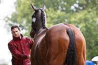 NZL-Tim Rusbridge (ONEFORTHENOTEBOOK) CCI3* FIRST HORSE INSPECTION: 2015 GBR-Blenheim Palace International Horse Trial (Wednesday 16 September) CREDIT: Libby Law COPYRIGHT: LIBBY LAW PHOTOGRAPHY