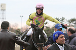 November 29, 2014: Condo Commando with Joel Rosario wins the 93rd running of the Grade II Demoiselle Stakes for 2-year olds fillies, going 1 1/8 mile at Aqueduct Racetrack. Trainer: Rudy Rodriguez. Owner: Michael Dubb, Bethlehem Stables and The Elkstone Group . Sue Kawczynski/ESW/CSM