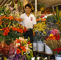 Flower vendor in Mexico City, Mexico--series - young man standing amidst buckets of flowers at flower market. Mexico City Distrito Federal, Mexico.