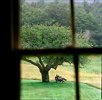 Couple, photographed through window, sitting on bench under apple tree<br />