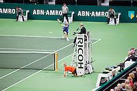 18-02-12, Netherlands,Tennis, Rotterdam, ABNAMRO WTT, Nikolay Davydenko