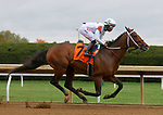 October 10, 2020: #7 Nashville ridden by jockey Ricardo Santana Jr. and trained by Steve Asmussen win an allowance race for owners CHC INC. and WinStar Farm LLC at Keeneland Racecourse in Lexington, K.Y. (Candice Chavez/Eclipse Sportswire/CSM)