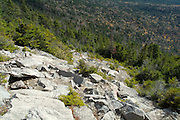Looking down South Slide, which is loacted on Mt. Tripyramid Trail near South Peak. Located in the White Mountains, New Hampshire USA. ..Notes: