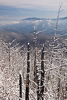 Winter snow, as viewed from Whitehouse Mountain, Rocky Fork, Unicoi County