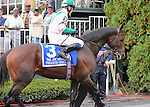 Treasure Beach (GB), ridden by Jamie Spencer, runs in the Joe Hirsch Turf Classic Invitational Stakes (GI) at Belmont Park in Elmont, New York on September 29, 2012.  (Bob Mayberger/Eclipse Sportswire)