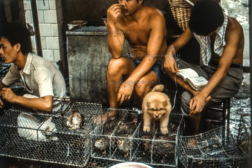 cani, gatti e volatili in vendita in gabbia<br /> dogs , cats and birds for sale in cage