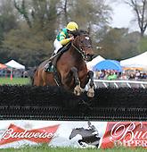 Aiken Spring Races - 03/23/2013 - COMPLETE ARCHIVE